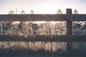 A fence on the side of meadow.